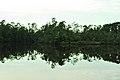 Biloxi River (4921595722).jpg