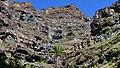 Biosphere Reserve La Gomera 26.jpg