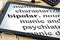 Bipolar disorder.jpg