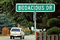 Bodacious Drive (5334889612).jpg