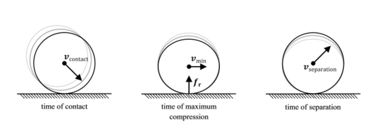 The compression and expansion phases of a collision between two solid bodies