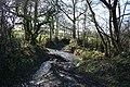 Bondleigh, a Taw stream - geograph.org.uk - 338611.jpg