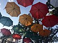 Borobudur umbrellas.jpg
