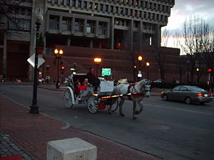 Transportation in Boston - One of several horse carriages transporting tourists around the city