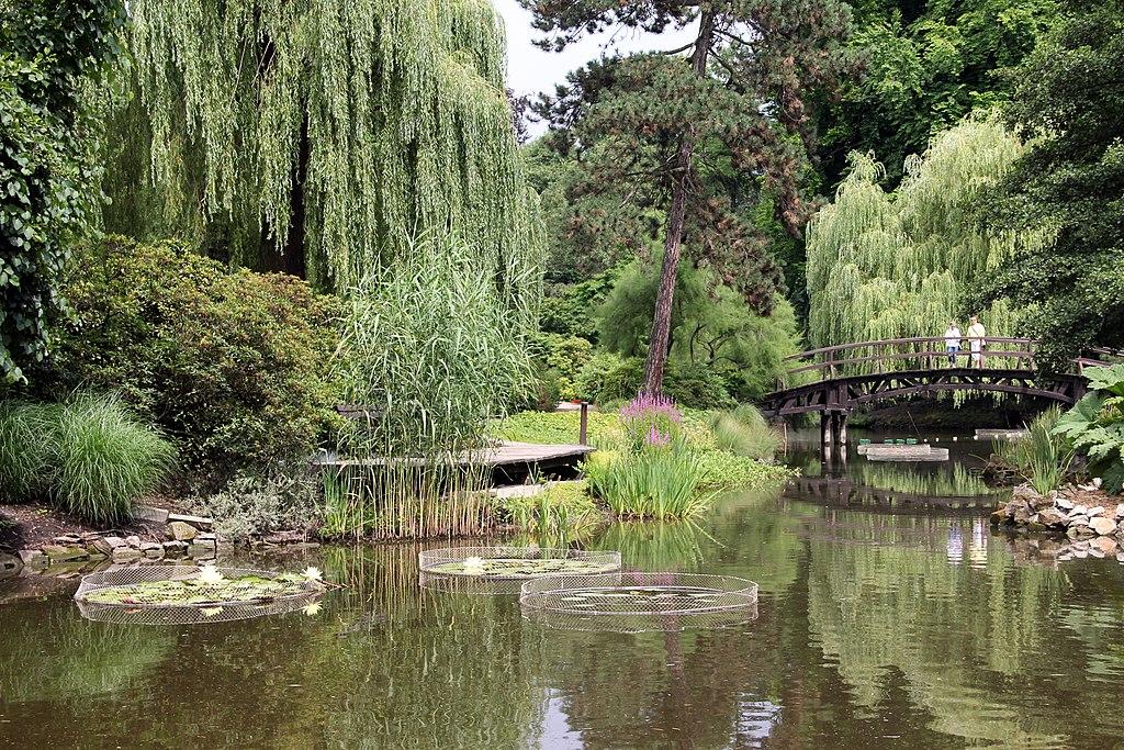 Le splendide jardin botanique de Wroclaw - Photo de ElaineLat.