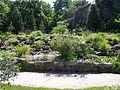 Botanischer Garten Erlangen.JPG