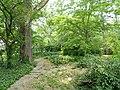 Botanischer Garten Freiburg - DSC06364.jpg
