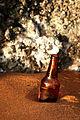Botella en la arena (3751758669).jpg
