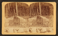 Boulder at Flume, Franconia Notch, N.H, from Robert N. Dennis collection of stereoscopic views 2.png
