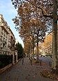 Boulevard Suchet automne, Paris 16e.jpg