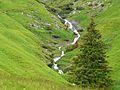 Bourg-d'Oueil ruisseau de Balès (1).jpg