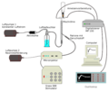 Brain and Antennal Electrical Activity de.png