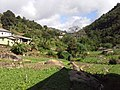 Brasil Rural - panoramio (54).jpg