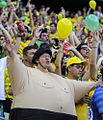 Brazil and Colombia match at the FIFA World Cup 2014-07-04 (50).jpg