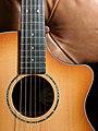 Breedlove Guitar Cutaway Closeup.jpg