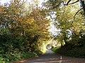 Bridge Road south of the A303 - geograph.org.uk - 619780.jpg