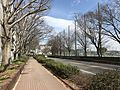 Bridgestone Street in Kurume, Fukuoka 2.jpg