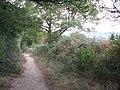 Bridleway Catsland Lane - geograph.org.uk - 1526138.jpg