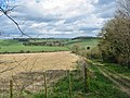 Bridleway Whitsbury Hampshire - geograph.org.uk - 922183.jpg