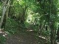 Bridleway descending towards Sutton - geograph.org.uk - 1405677.jpg