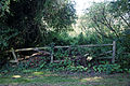 Bridleway entrance fence Quendon Essex England.jpg