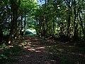 Bridleway near Inholms Farm - geograph.org.uk - 57127.jpg