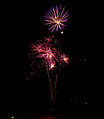 British Fireworks Championship 2009 13.jpg