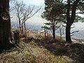 Brownsea Island coastal viewpoint (33917390885).jpg