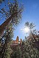 Bryce Canyon (15201668279).jpg