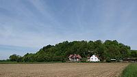 Buchberg bei Münster von Süden.jpg