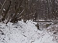 Bud XII Ördög (Hell) rift stream in Remete(Hermit) Valley.JPG