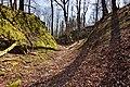Burgruine-Hattstein-Halsgraben-JR-E-3744-2020-04-02.jpg