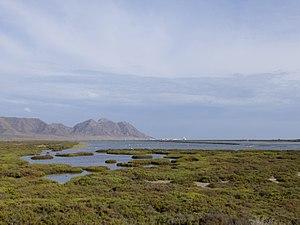 Cabo de Gata - las salinas de San Miguel.jpg
