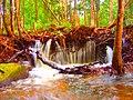 Cachoeira da suframa - panoramio (3).jpg