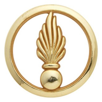 Grenade (insignia) - Image: Cadre spé béret