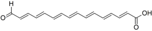 Calostomal - Image: Calostomal