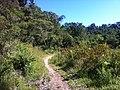 Caminho - panoramio (4).jpg