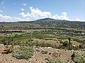 Camino Icalma- Lonquimay 2.jpg