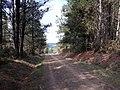 Camino Primitivo, O Burgo de Negral 06.jpg