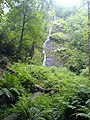 Canonteign Falls - geograph.org.uk - 200559.jpg