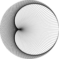 Cardioid drawn with Processing.png