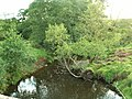 Carwinley Burn downstream from Hillback Bridge - geograph.org.uk - 564983.jpg
