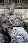 Caserta Delfines 09.jpg