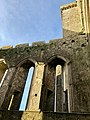 Cashel Cathedral, Rock of Cashel, Caiseal, Éire (46539715302).jpg