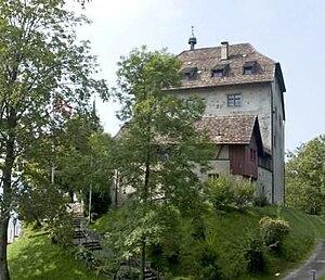 Gossau, St. Gallen - Castle Oberberg in Gossau