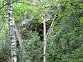 Cave - panoramio (6).jpg