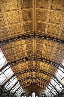 Ceilings of the Natural History Museum, London Decorated ceilings