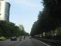 Central Expressway 2.JPG