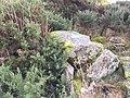 Chambered cairn 350m E of Woodhead.jpg