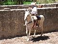 Charreada en El Sabinal, Salto de los Salado, Aguascalientes 16.JPG